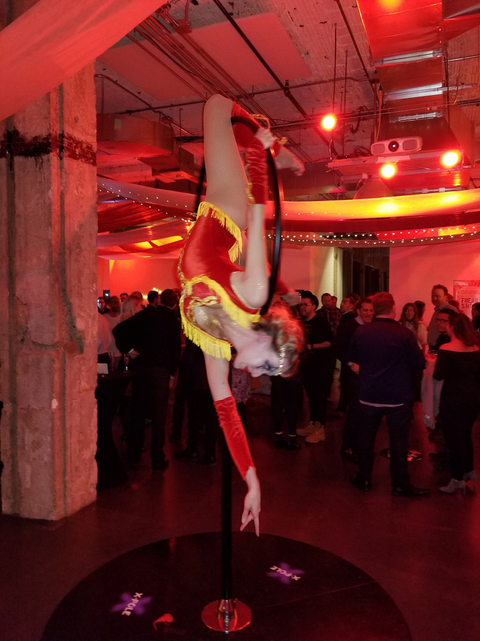 Aerialist-At-Event.jpg