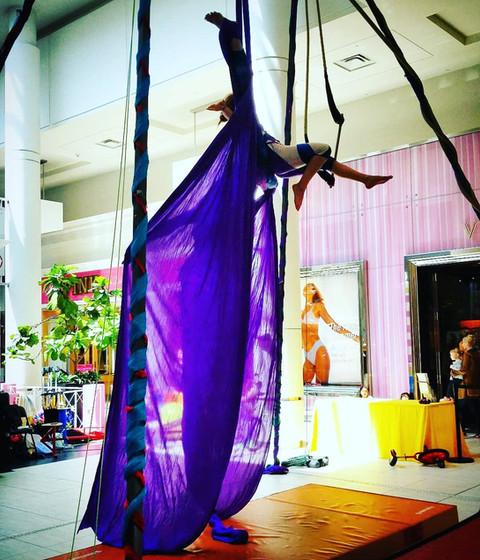 Hanging-Aerial-Show.jpg