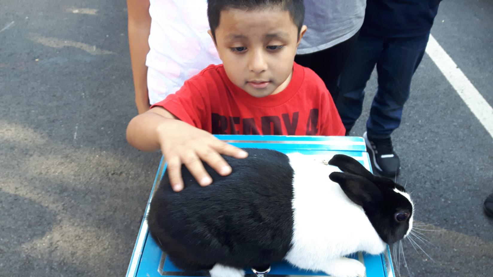 Rabbit-With-Little-Boy.jpg