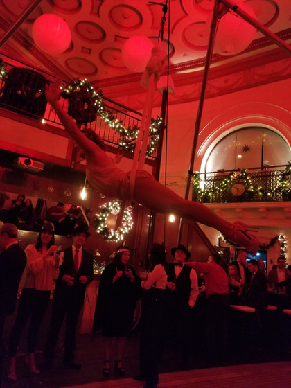 Aerialist-For-Hire.jpg