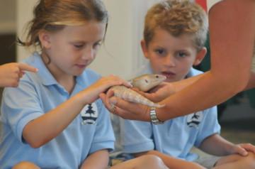 Snake-Educationa;-Show-For-Kids.jpg