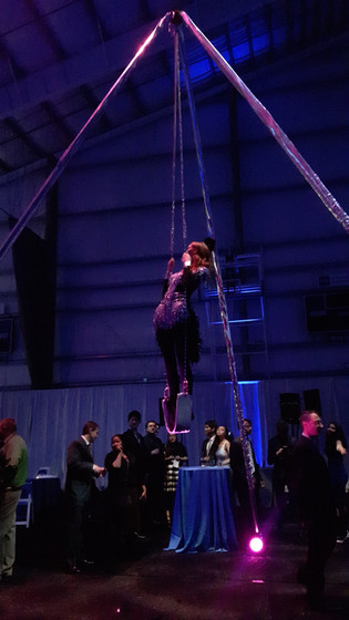 MME-Exposed-Ceiling-Beam-Aerial-Show.jpg