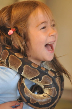 Snake-At-Interactive-Educational-Show.jpg