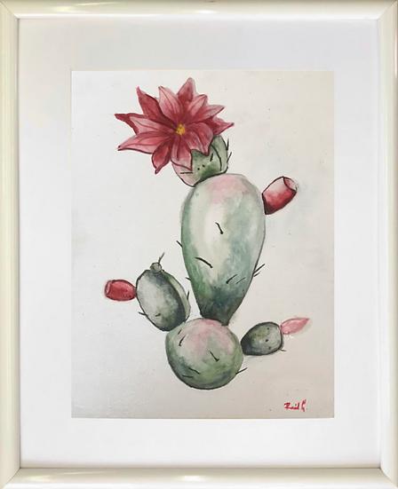 Cactus II