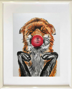 Fox with a Bubble Gum