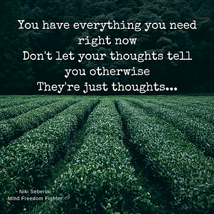 Niki Seberini - Quote - the power of thoughts