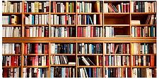 Books on shelves.webp