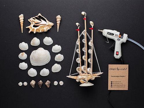 Craft Kit - Deniz Kabukları