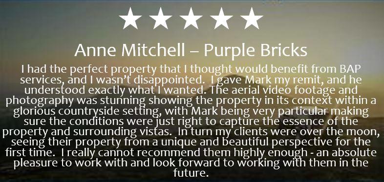 Review 7 Purple Bricks.JPG