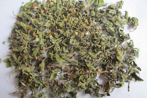 Dry Tulsi/Holy Basil leaves