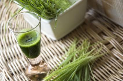 Wheatgrass Juice/Shot Benefits