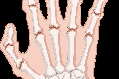 Rheumatoid Arthritis Herbal Powder