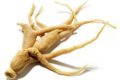 Fresh Ashwagandha Roots 1kg