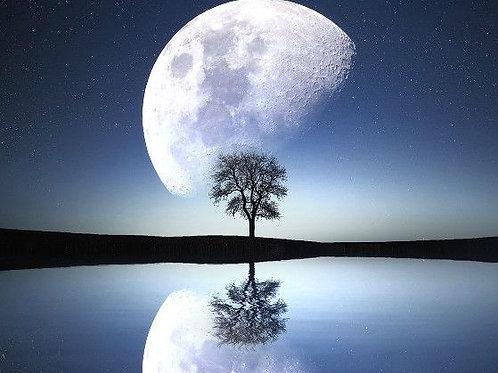 Sap Moon