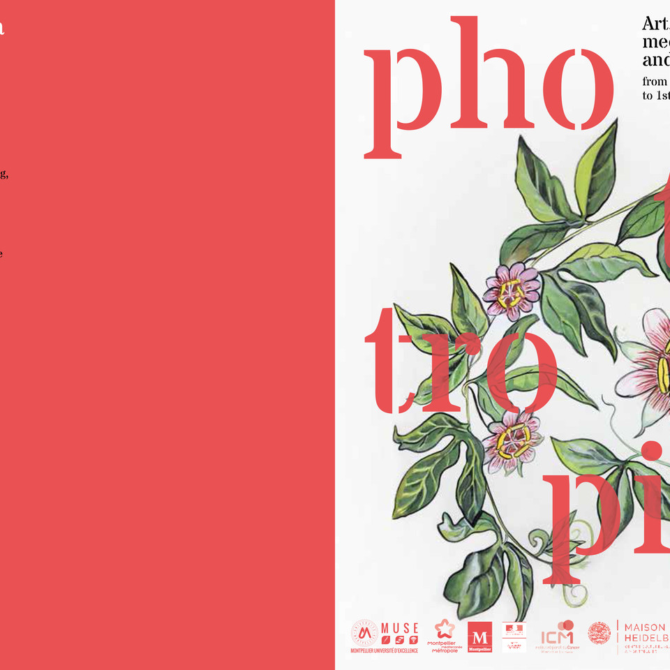 Phototropia (flyer), 2018