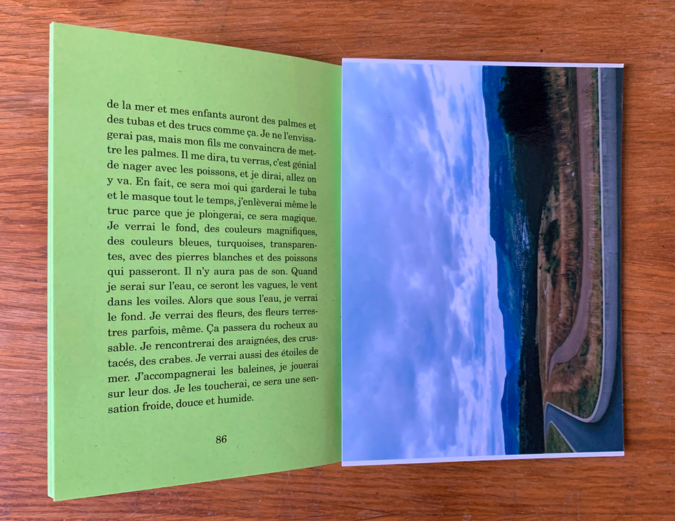 N.Lichtig, Mon nom sera Frank, booklet (32 p., 5000 ex.), photography, 2008—
