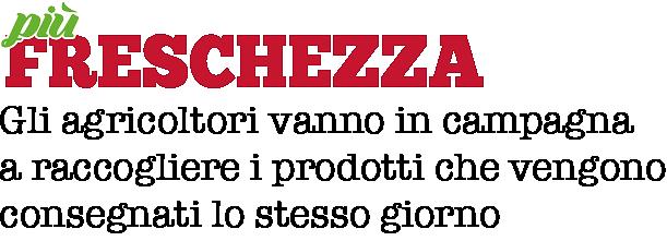 Più_Freschezza.png