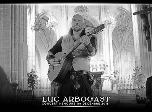 Concert Luc Arbogast - PHOTOS par VINRECH 3D