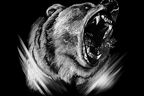 GRIZZLY  SILVER - 2018 - 120x80 cm - Toile