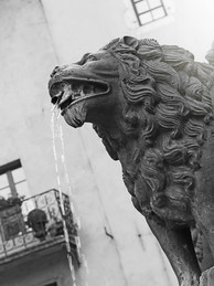 LION FONTAINE