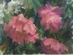 French Peonies