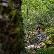 Norway-2453.jpg