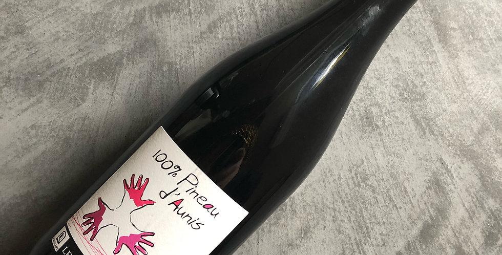 Les Grandes Vignes / Pineau d'Aunis 2019