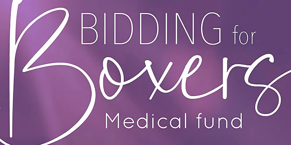 Bidding For Boxers - Medical Fund 2020