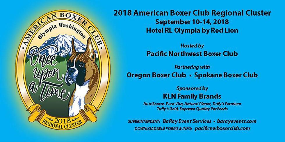 MLBR at the 2018 American Boxer Club Regional