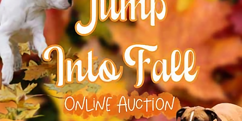 Jump into Fall Auction