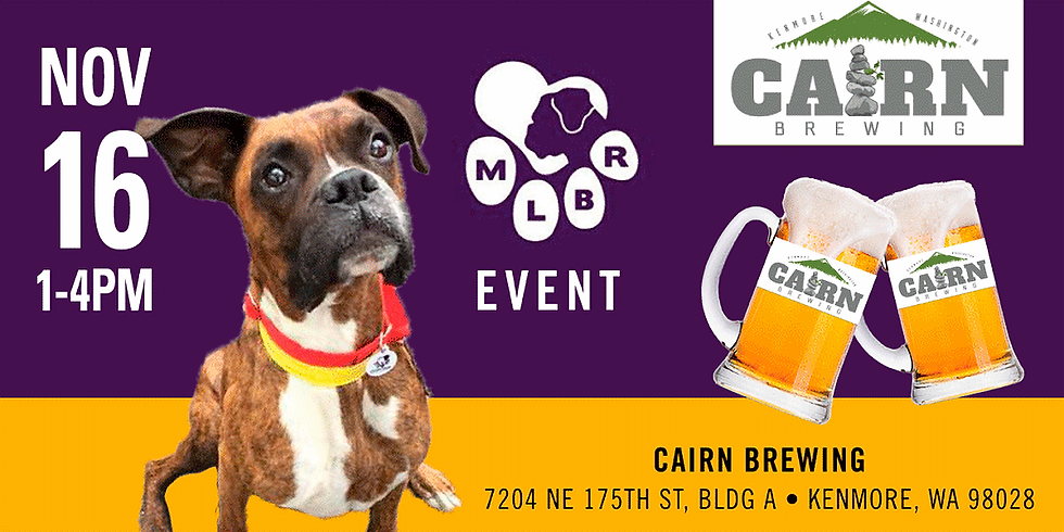 MLBR's 4th Annual Barking, Brews, & Holiday Photos Too