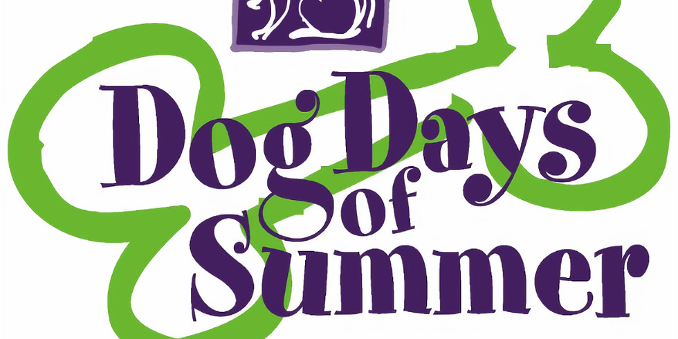 MLBR at Dog Days of Summer