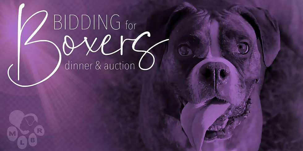 Bidding for Boxers