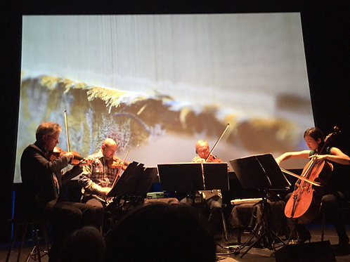 Taro Pood (Warp and Weft) (2014) - for string quartet and tape (film optional)