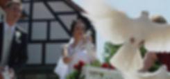 Hochzeitstauben Fischer auf der Hochzeitsmesse your wedding party