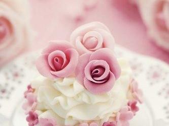 Mariage Cupcakes