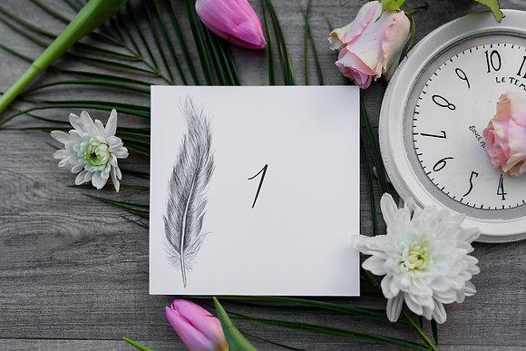 Nom / Numéro de table Plume