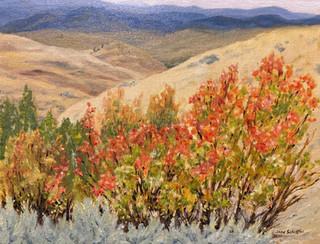 Sparrow Grasslands in October