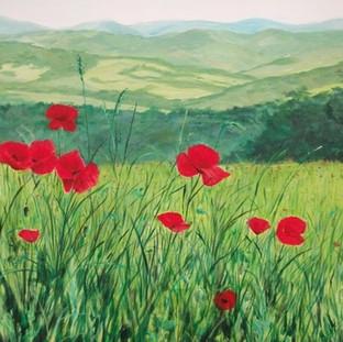 Italian Poppies