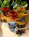 Asheville Tea Company Hot Tea.png