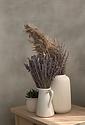 Lavender Arrangement.png