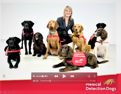 Medical Detection Dogs (2).png