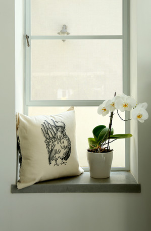 Rooster pillow, 180NIS