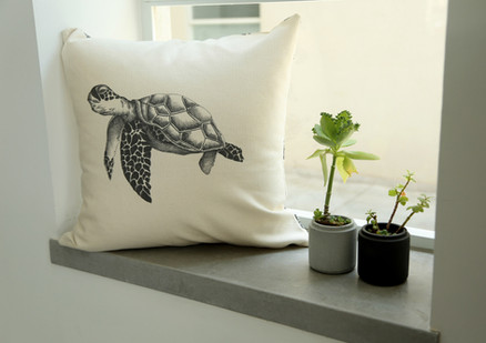 Sea turtle pillow, 180NIS