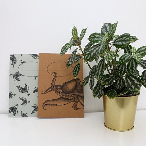 Octopuse notebook