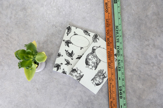 Seaturtles and Roosters notebooks, 48NIS