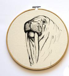 Walrus hoop, 23cm, 120NIS
