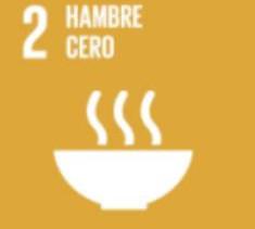 14/10/2020. El 16 de octubre se celebra el Día Mundial de la Alimentación