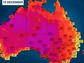 Cuidado y recomendaciones por las altas temperaturas