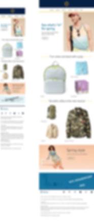 45281-291228--Email-Mockup.jpg
